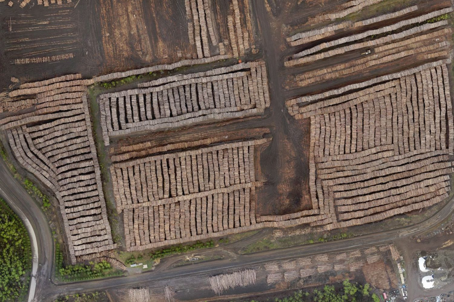 UAV_Inventory_Logpile1_Cropped